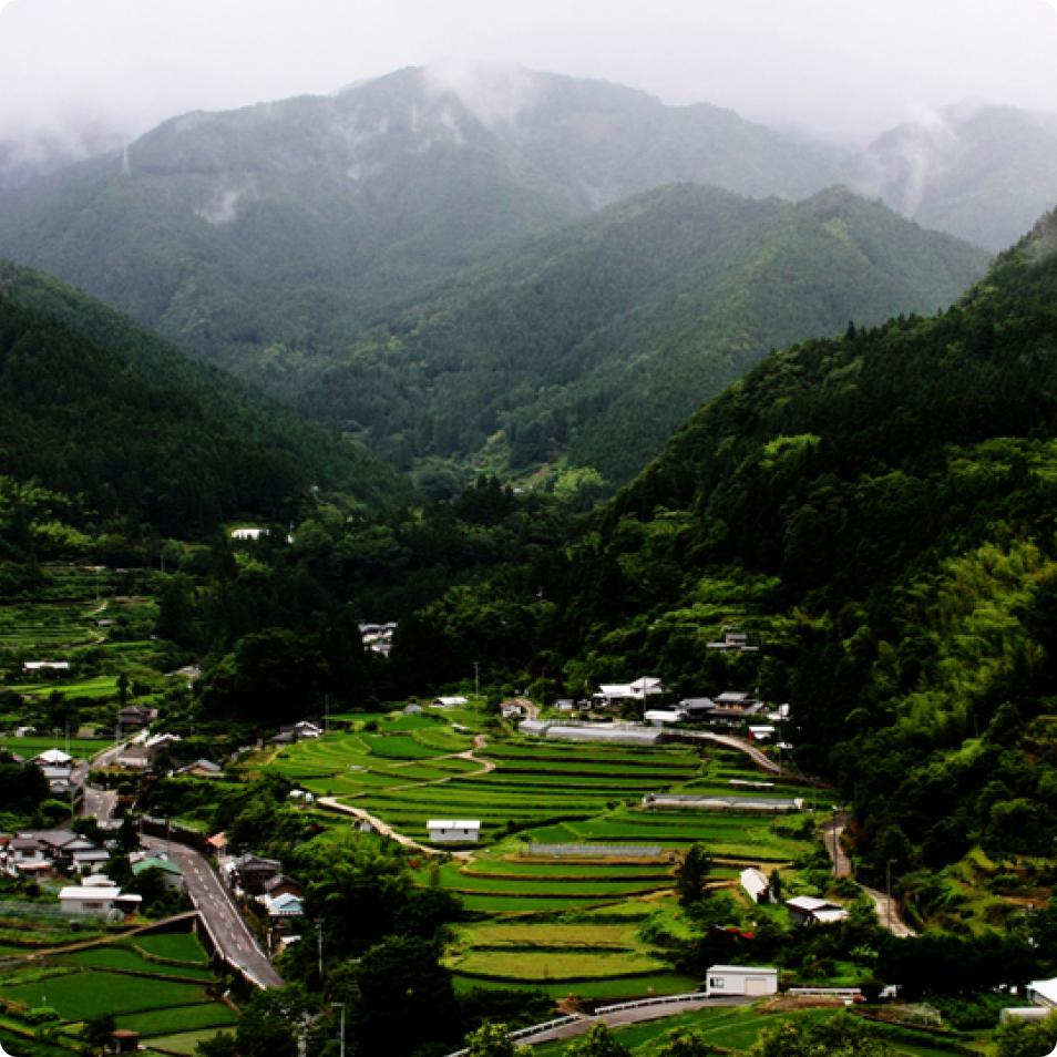 上勝町の風景